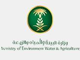 وزارة المياه
